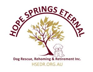 HSE-DogRescue