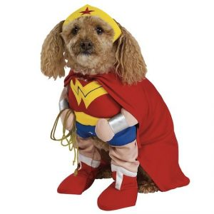 super-hero-dog_jpg_644x0_q100_crop-smart