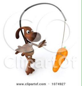 Carrot Dog